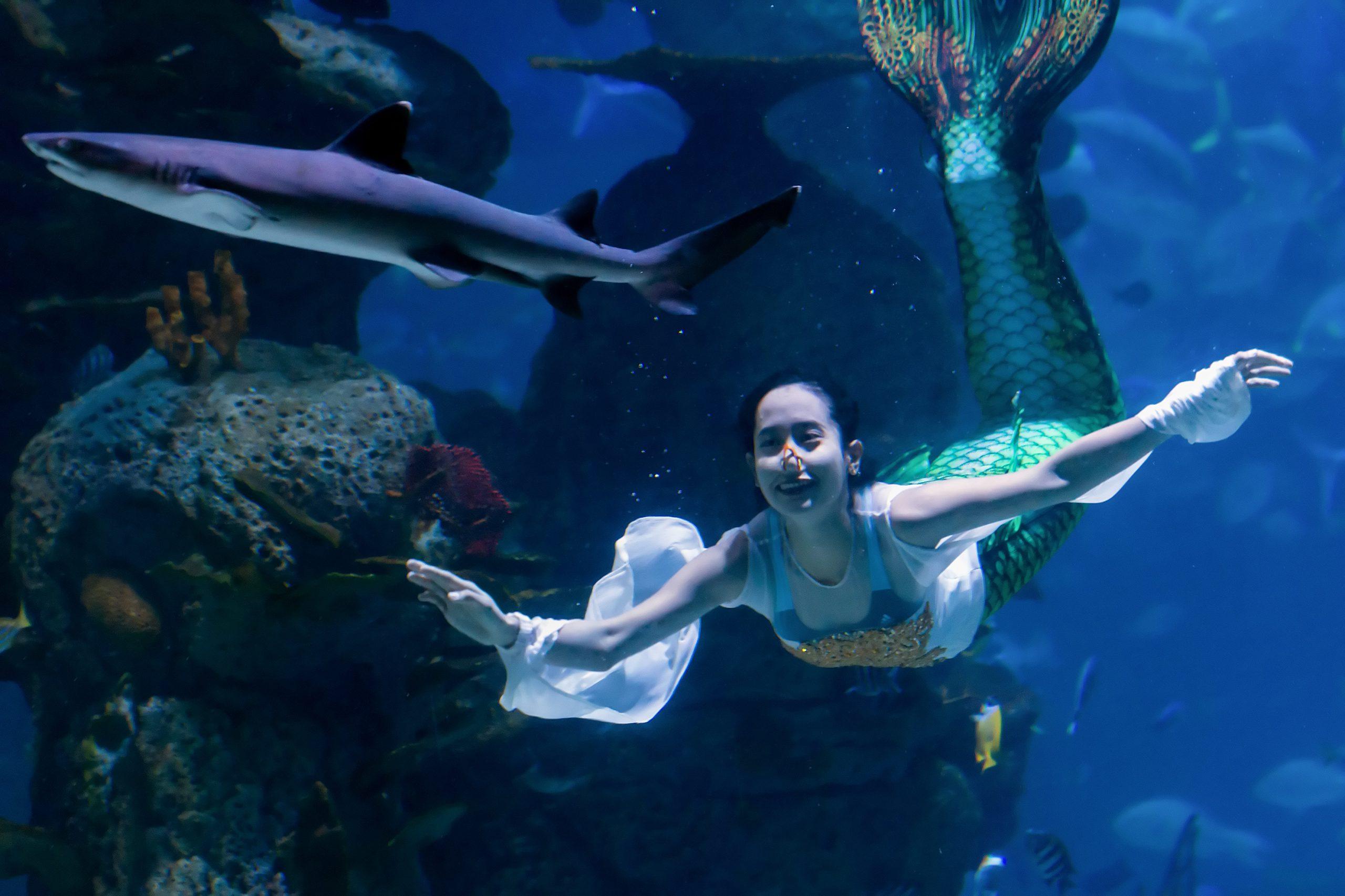 Sirena-nuota