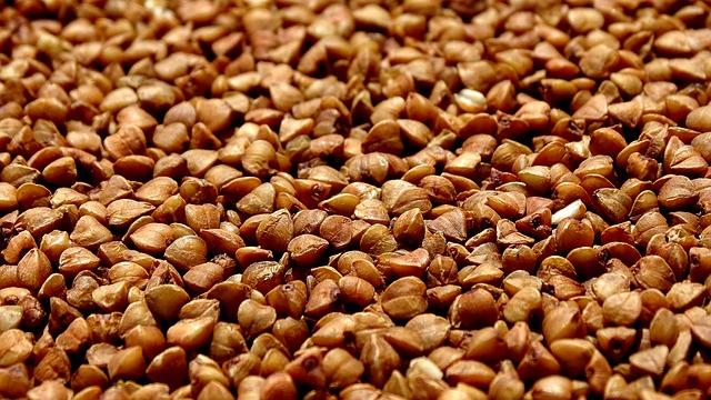 Chicchi-grano-saraceno