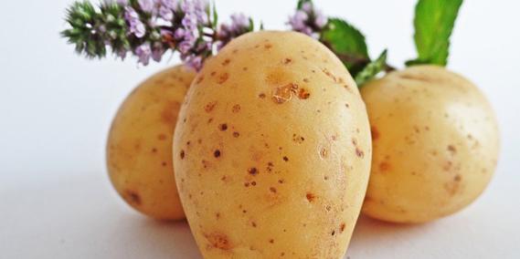 patate-dieta-perdere-peso